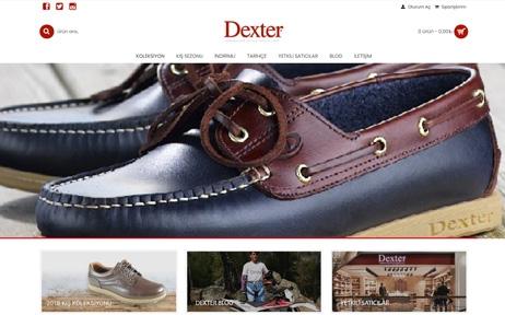 dexter, web tasarım