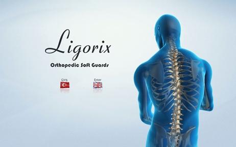 web tasarım, Ligorix